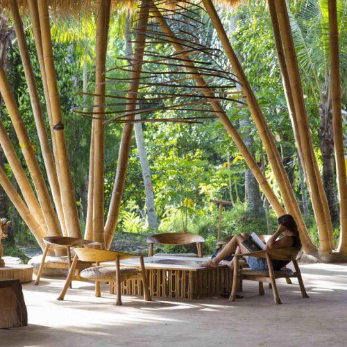 bamboo, bambú, green school, diseño, diseño ecológico, arquitectura ecológica, holismo, green education, Elora Hardy, luxiders, revista de diseño ecológico, eco design