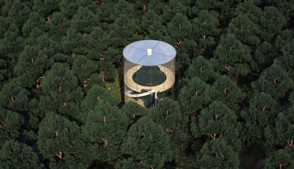casa en un árbol, Masow, casa, arquitectura, diseño, medio ambiente, interiorismo, eco diseño, revista de diseño