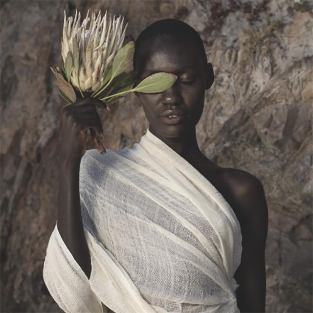 xB_AFRICANBOTANICS_1