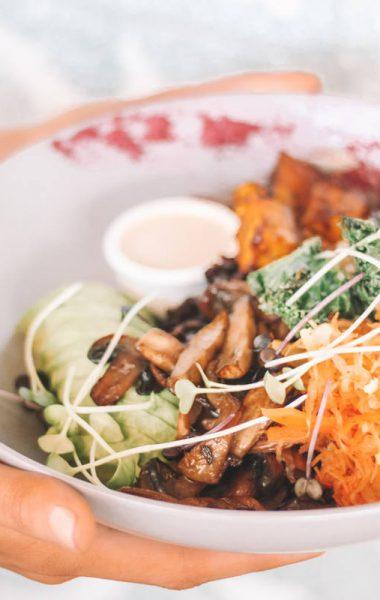 plant-based-vegan-vegetarianism, what is more sustainable, why veganism is sustainable, why plant-based is more sustainable, luxiders magazine, sustainable food magazine, sustainable lifestyle magazine,