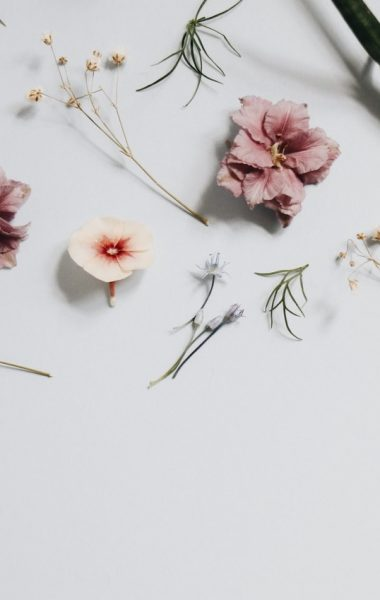 Abel, perfume, fragrance, sustainable perfume,Four Sustainable Perfume Brands to Spritz All Summer Long, summer, summer perfume, natural perfume, eco friendly perfume, Sana Jardin, Sana Jardin perfume