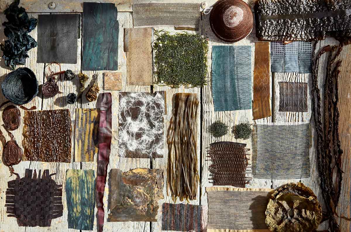 Algae: The Muse of Violaine Buet's Textiles | Luxiders Magazine