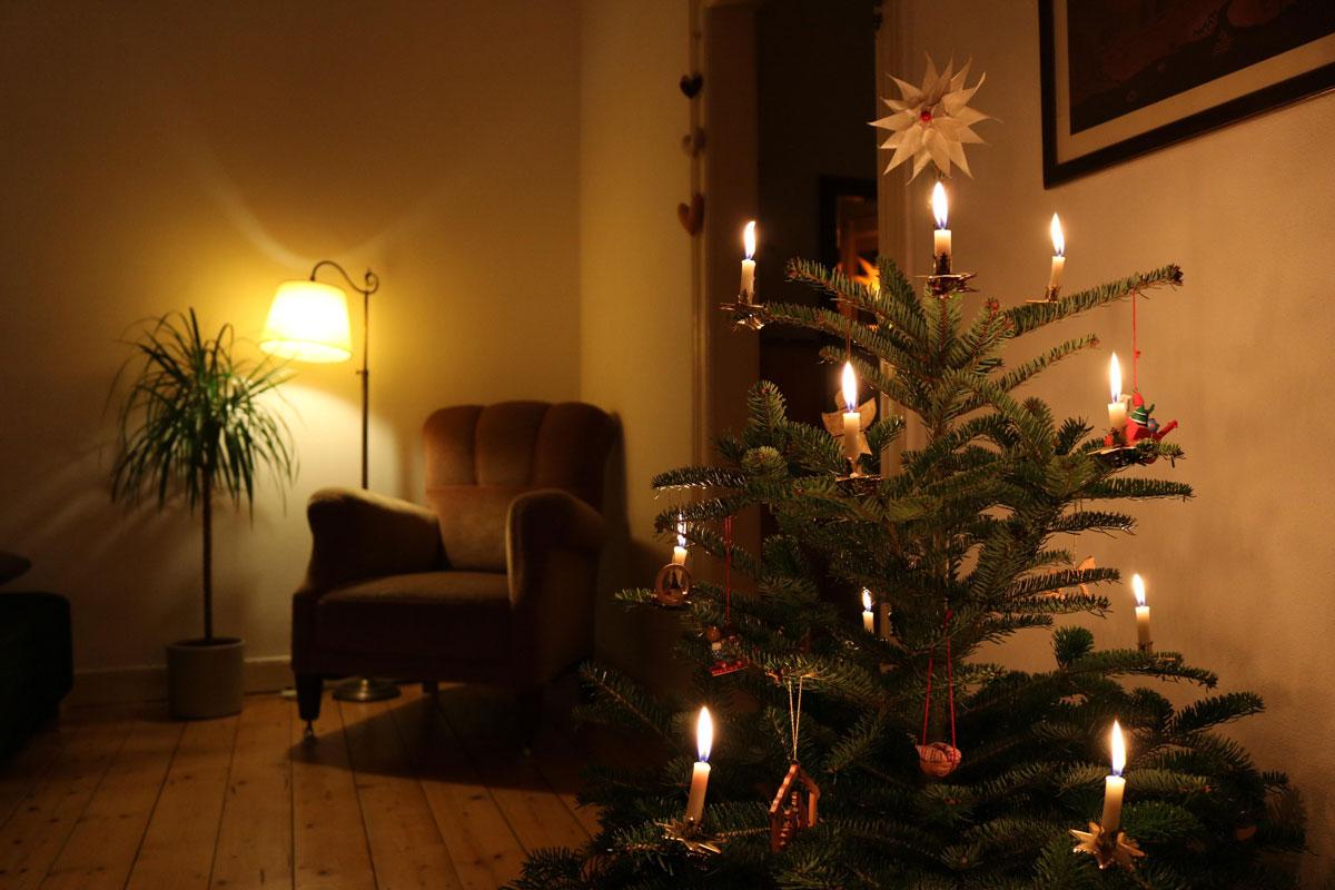 jason-vigeland-christmas-tree