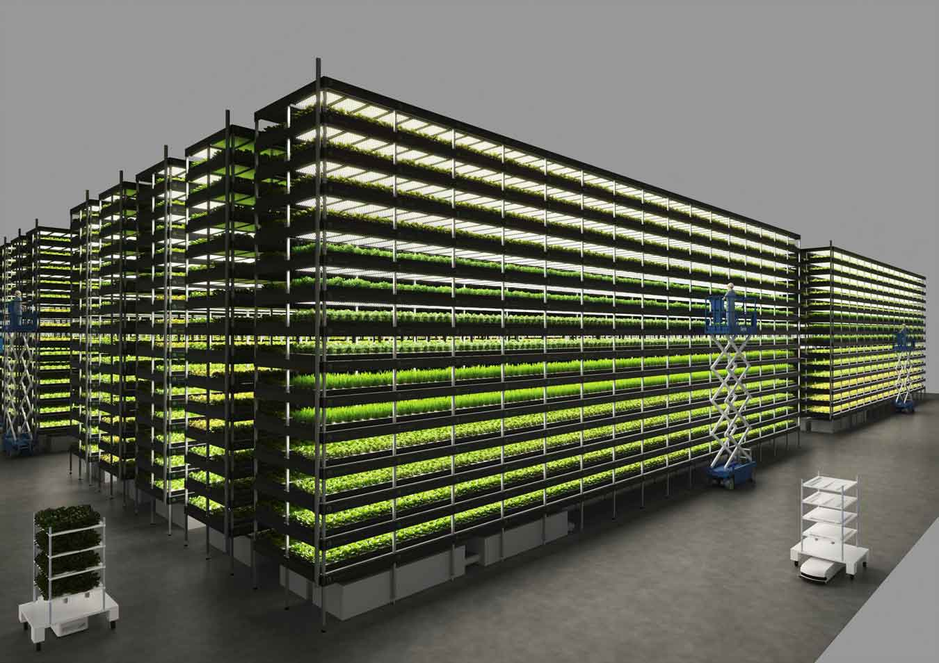 Vertical farms, planet city, Liam Young, sci-arc, short film, sustainable food system, food system, artificial environment, eco friendly solution, architecture, agriculture, sustainable agriculture, farming, sustainable farming, healthy food supply, food supply, local food, food, tech food, Nordic Danish, re wild, crop cultivation, vertical forest, YesHealth Group, LED lighting, microbial fertilisers, hydroponic system, journal science, planting, crops internal clock, self sufficient, self sustained, circular city, greens, micro greens, soil, harvest